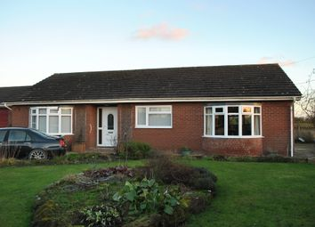 Thumbnail 3 bed semi-detached bungalow to rent in Oldcastle Lane, Oldcastle, Malpas, Cheshire