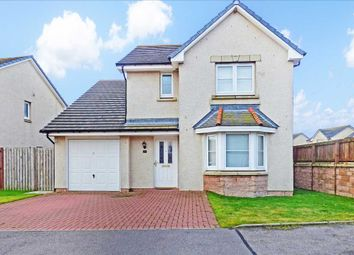 Thumbnail 4 bed detached house to rent in Eskywell Place, Portlethen, Aberdeen