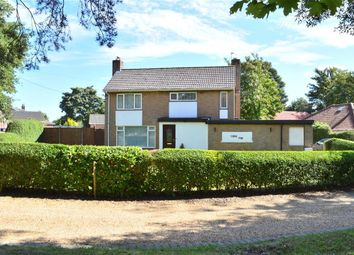 Thumbnail 3 bedroom detached house for sale in Watton Road, Swaffham