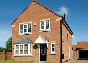 Thumbnail 3 bed detached house to rent in Buttermere Close, Waddington, Lincoln