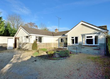 Thumbnail 4 bed detached bungalow for sale in Badger's Bend, Mill Lane, Mere, Wiltshire