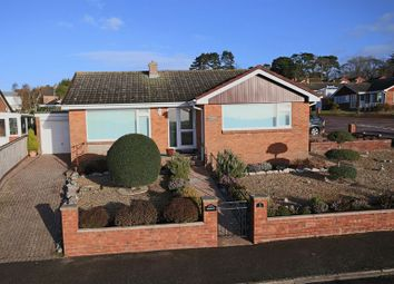 Thumbnail 2 bed detached bungalow for sale in Ellwood Road, Exmouth