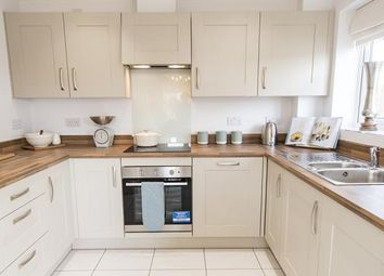 """Thumbnail 5 bedroom town house for sale in """"The Oak At The Parade, Bridgwater"""" Bristol Road, Bridgwater"""
