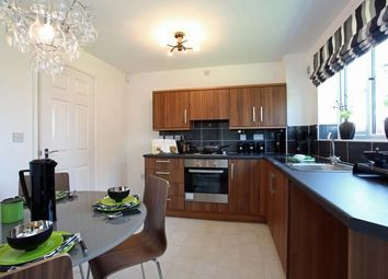 Thumbnail 3 bed detached house for sale in The Louth, Highfield Park, Fordfield Road, Sunderland