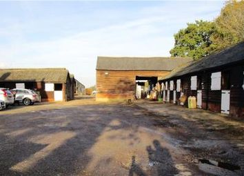 Thumbnail Equestrian property to rent in Moat Farm Equestrian Centre, Datchworth, Hertfordshire