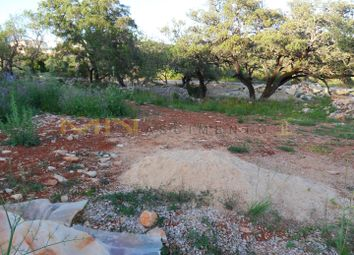 Thumbnail Land for sale in Located Close To Loulé (São Clemente), Loulé, Central Algarve, Portugal