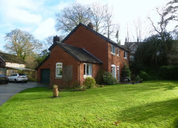 Thumbnail 4 bed detached house to rent in Awliscombe, Honiton