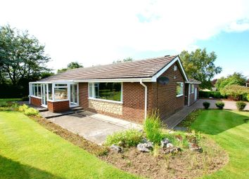 Thumbnail 4 bedroom detached bungalow for sale in Beech Court, Ponteland, Newcastle Upon Tyne