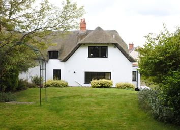 Thumbnail 2 bedroom cottage for sale in Farthings, The Street, Motcombe