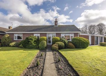 Thumbnail 3 bed bungalow for sale in Woodlands Road, Pewsey, Wiltshire