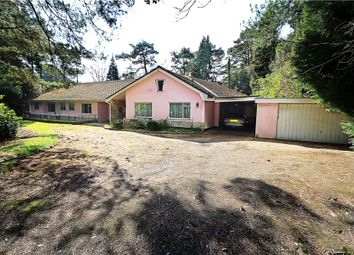 Thumbnail 5 bed detached bungalow for sale in Branksome Park, Poole, Dorset