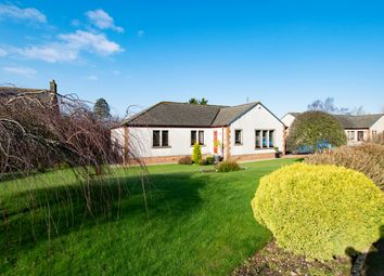 Thumbnail 3 bed detached bungalow for sale in 33 Scroggie Meadow, Annan, Dumfries & Galloway