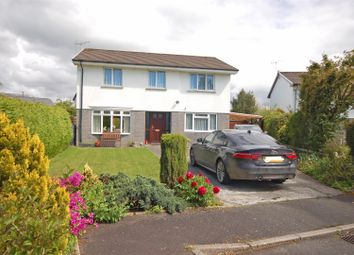 Thumbnail 4 bed detached house for sale in Glanceulan, Penrhyncoch, Aberystwyth