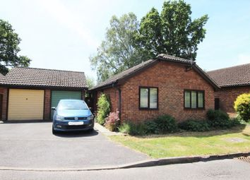 Thumbnail 2 bedroom bungalow to rent in Fox Road, Haslemere
