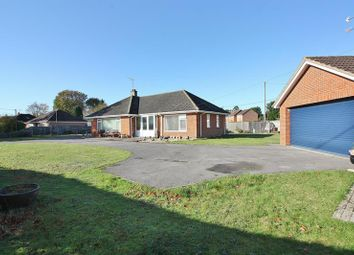 Thumbnail 3 bed bungalow for sale in Drift Road, Whitehill, Bordon
