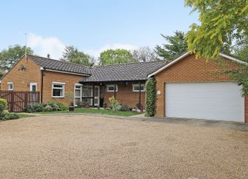 Thumbnail 3 bed detached bungalow for sale in Holbrook Road, Cambridge