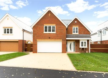 Main Road, Nutbourne, Chichester, West Sussex PO18. 5 bed detached house for sale