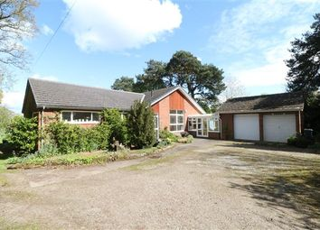 Thumbnail 3 bed bungalow for sale in Heads Nook, Heads Nook, Brampton, Cumbria