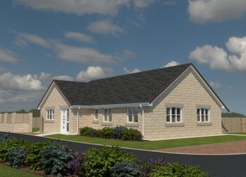Thumbnail 3 bedroom detached bungalow for sale in The Sapphire, Paddock View, Hambleton