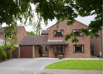 Thumbnail 4 bed detached house to rent in The Mews, Flaxton Road, Strensall, York