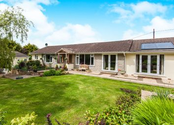 Thumbnail 4 bedroom detached bungalow for sale in Longdown, Longdown, Exeter