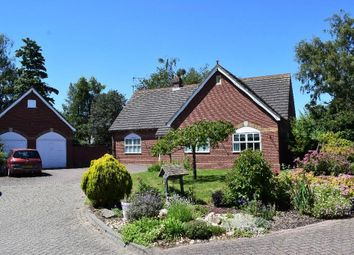 Thumbnail 3 bed bungalow for sale in Winfrey Close, Long Sutton, Spalding
