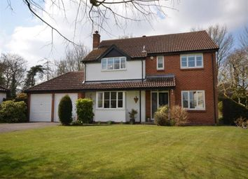 Thumbnail 5 bed detached house to rent in Five Acres, Cambridge Road, Stansted