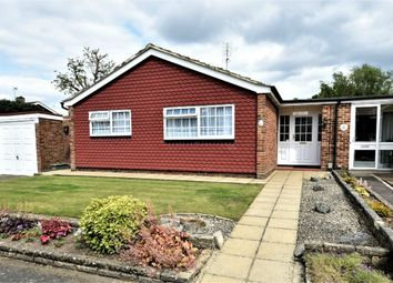 Thumbnail 3 bed detached bungalow for sale in Silver Drive, Frimley, Camberley, Surrey