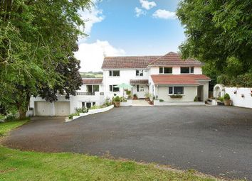 Thumbnail 4 bed detached house for sale in Little Hill, Orcop, Herefordshire