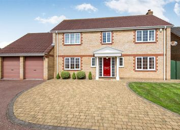 Thumbnail 4 bed detached house for sale in Chestnut Hill, Norwich