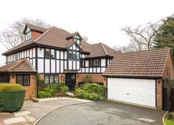 Thumbnail 5 bedroom detached house for sale in Applewood Close, Whetstone, London
