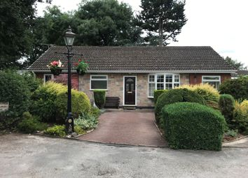 Thumbnail 3 bed bungalow to rent in Glendale Avenue, Glenfield