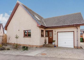 Thumbnail 4 bed detached house for sale in Rosehill Gardens, Montrose