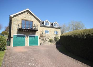 Thumbnail 5 bed detached house for sale in Heugh House Lane, Haydon Bridge, Hexham