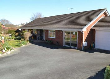 Thumbnail 4 bedroom bungalow for sale in 10, Millfields, Milford, Newtown, Powys