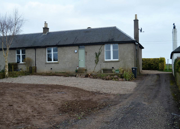 Thumbnail 3 bed property to rent in Mains Of Ravensby, Carnoustie, Angus