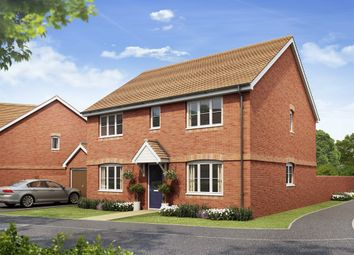 "Thumbnail 4 bedroom detached house for sale in ""The Hadleigh"" at Hyton Drive, Deal"
