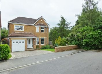Thumbnail 4 bedroom detached house for sale in Donstone View, Dinninigton, Sheffield