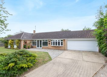 Thumbnail 4 bed detached bungalow for sale in Grove Road, Carlton Colville, Lowestoft