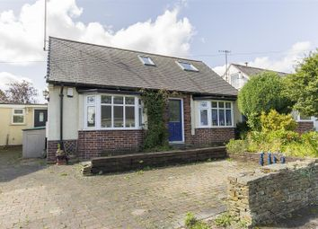 Thumbnail 4 bed detached bungalow for sale in Westbourne Grove, Chesterfield