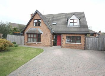 Thumbnail 5 bed detached house for sale in Edengrove Park, Ballynahinch