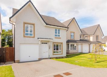 Thumbnail 4 bed detached house to rent in Sandyriggs Loan, Dalkeith