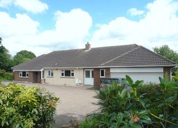 Thumbnail 4 bed bungalow to rent in Pound Lane, Smeeth, Ashford