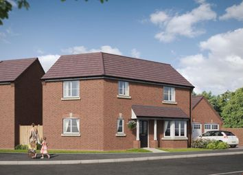 Thumbnail 3 bedroom detached house for sale in Palmerston Drive, Tividale
