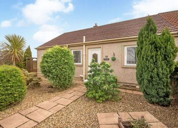 Thumbnail 3 bed semi-detached bungalow for sale in 16 Lamington Road, Gladsmuir