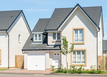 "Thumbnail 4 bed detached house for sale in ""Drummond"" at Newtonmore Drive, Kirkcaldy"