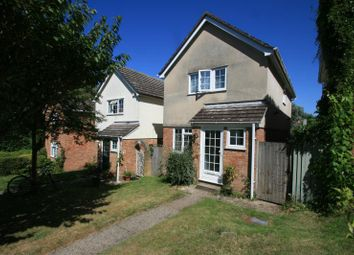 Thumbnail 4 bed detached house to rent in St Albans Road, Colchester, Essex