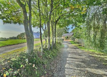 Thumbnail Property for sale in 49220 Le Lion-D'angers, France