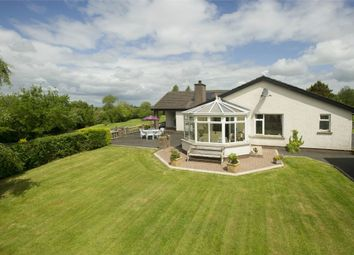 Thumbnail 4 bed detached bungalow for sale in Corcreevy Road, Richhill, Armagh