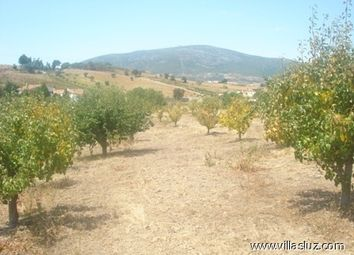Thumbnail Property for sale in Alenquer, Leiria